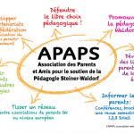 Connaitre et vivre la pédagogie Steiner grâce à l'APAPS