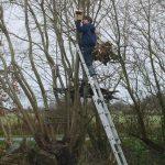 Travail du bois avec les enfants