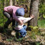 Nos journées en forêt